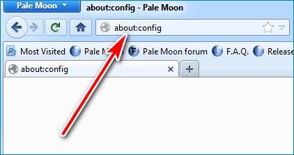 Настройки Pale Moon