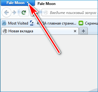 Опции браузера Pale Moon