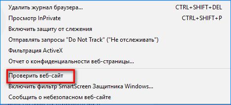Проверка в Internet Explorer