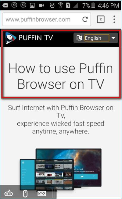 Телевидение Puffin