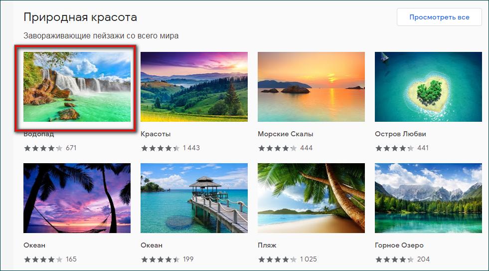 Выбор темы в интернет магазине Chrome