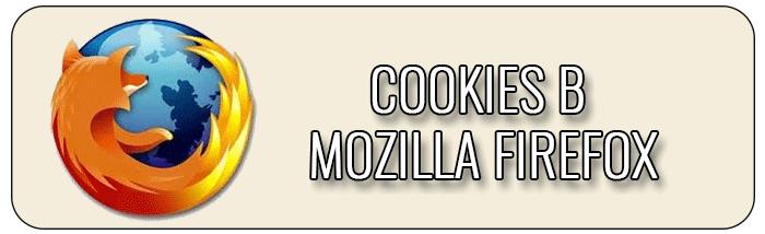 Cookies в Mozilla Firefox