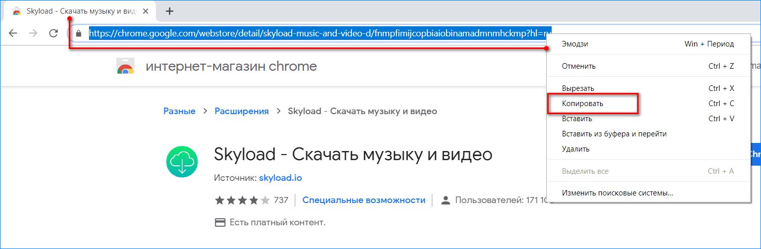 Копирование ссылки SkyLoad