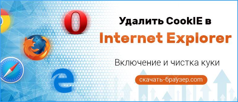 Удалить CookIE в Internet Explorer — включение и чистка куки в браузере